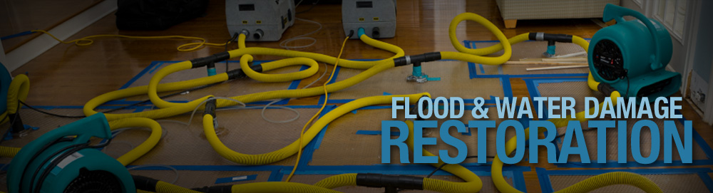 lotus water damage cleaning services Northcote South