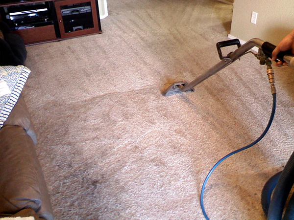 residential carpet dry cleaning Karragarra Island