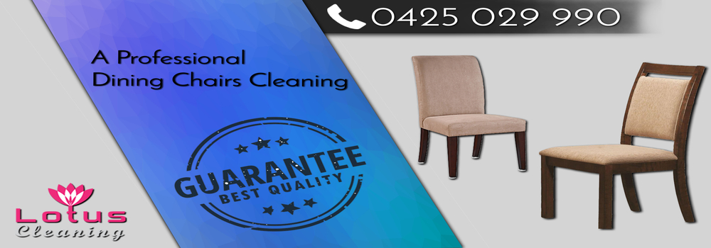 Dining Chair Cleaning Blind Bight